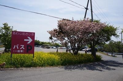 淡路7.JPG
