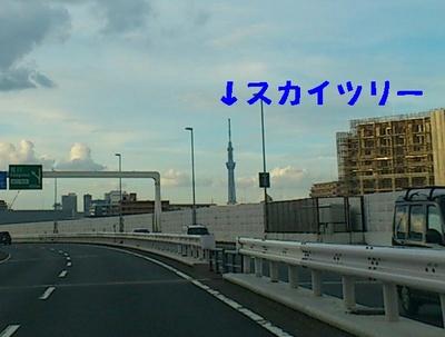 スカイツリー.JPG