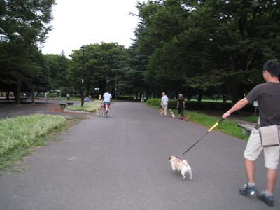 小金井公園�B.jpg